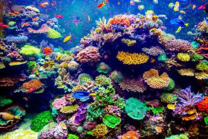 Coral reef burial